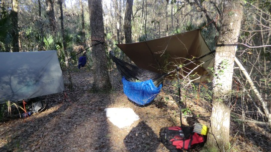 Hammock set-up with new underquilt - Duffy pulled tarp back for picture.